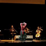Vuelve 'Ritmo en el Corral', el festival de músicos de Alcalá que ya va por su IV edición